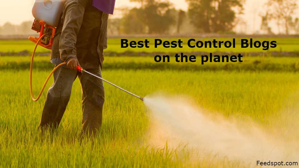 Pest Control Blogs