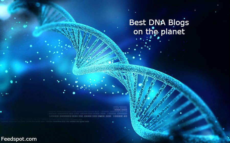 DNA Blogs