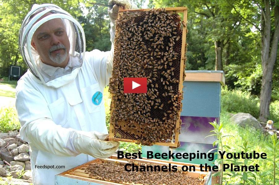 beekeeping-youtube