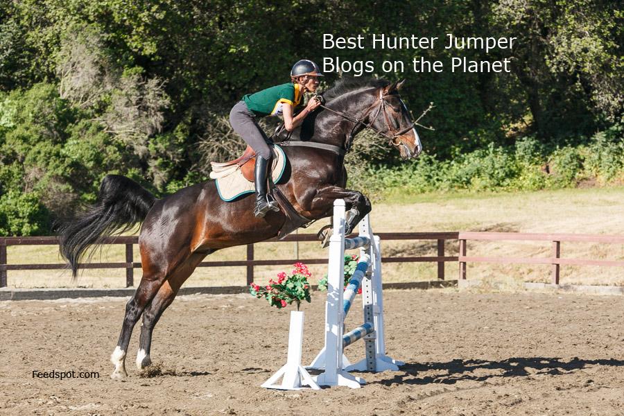 hunter jumper