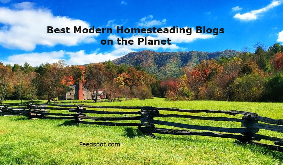 Modern Homesteading Blogs