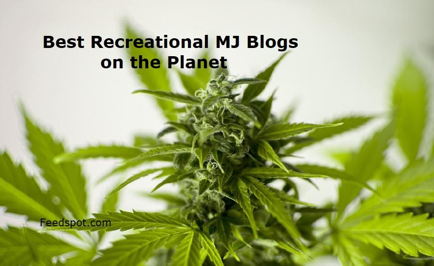 Recreational MJ Blogs