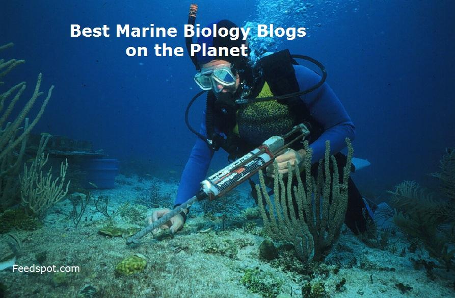 Marine Biology Blogs